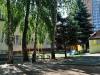 Школа Дет Сад парк